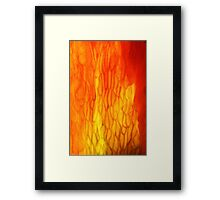 incandescence Framed Print