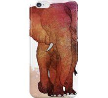 Eva the Ele iPhone Case/Skin