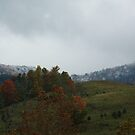 First Snow on Clinch Mountain by Linda Costello Hinchey