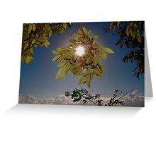 CLOUD FOREST VIEW Greeting Card