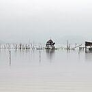 Vietnam by Thierry Beauvir