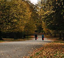 Autum Walk by Andrew Cryer