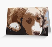 Cute puppy gazing at the photographer Greeting Card