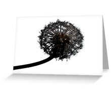 Sillouette Dandelion Greeting Card