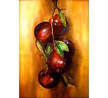 Apples....A Still Life.. Photographic Print