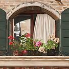 Italian window by Victoria  _Ts
