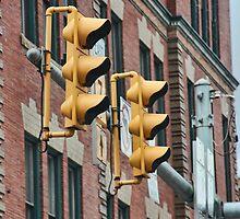 Traffic Light Impatience ! by shadyuk