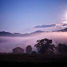 Sunrise by Mary Ann Reilly