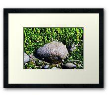 Tidal Vibrance Framed Print