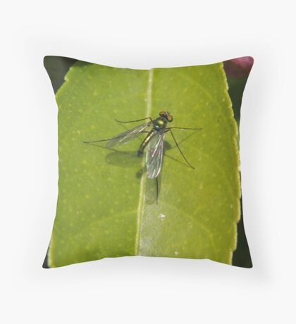 Winged insect on leaf Throw Pillow