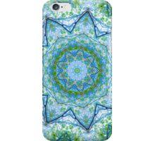 canopy kaleidoscope iPhone Case/Skin