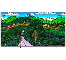 Runner in Wine Country Photographic Print