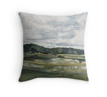 Before the Afternoon Rain Throw Pillow