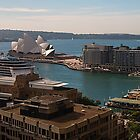 Glorious Sydney Harbor by Marylou Badeaux