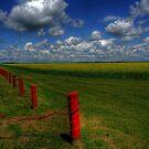 Prairie Splendour by Larry Trupp