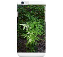 Texas Fern in Sunlight iPhone Case/Skin
