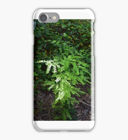 Texas Fern in Sunlight iPhone Case/Skin