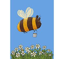 Bumble Bear with honey flies home Photographic Print