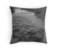 Upstream Vision Throw Pillow