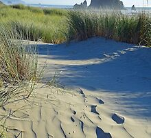 Haystack Rock with Sand Dune, Oregon by stevelink
