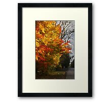 Country Tree Framed Print