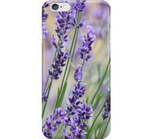 Lavender Patch iPhone Case/Skin