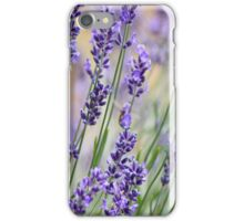 Lavender Patch iPhone Case/Skin