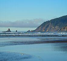 Northwest Oregon Coastline by stevelink