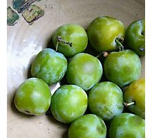 Greengages - The Pick of the Crop Photographic Print