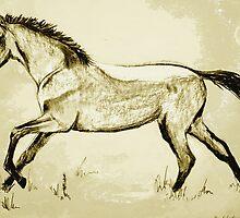 Dun Pony 5 by Alexandra Felgate