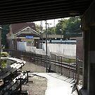 Newport Station Walkway by Joan Wild
