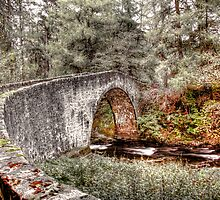 Old Bridge - Strathdon by Mark Mair