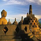 Buddha Statue and Stupas, Borobudur  by Petr Svarc