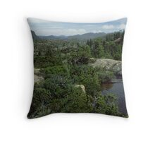 The Labrynth Throw Pillow