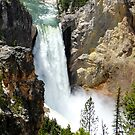 Upper Falls, Yellowstone Canyon by Braedene