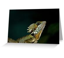 Boyds water dragon Greeting Card