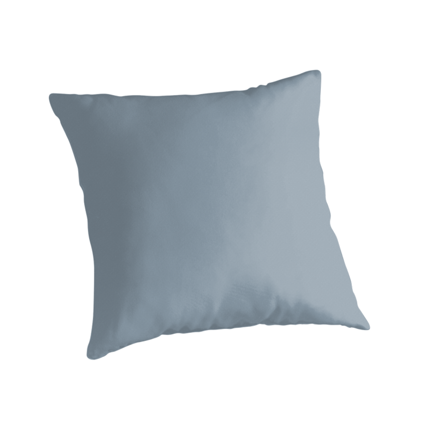 Throw Pillows Pictures :