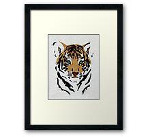 Green Eyed Tiger Cub Framed Print