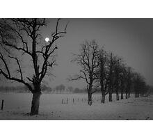 creepy landscape Photographic Print