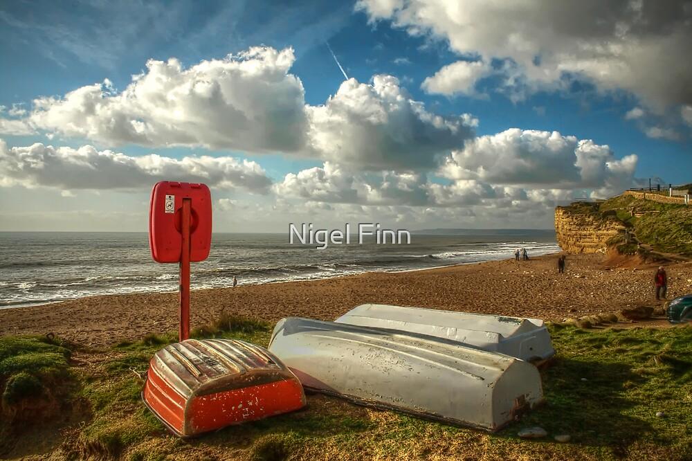 The Voyage Ahead by Nigel Finn