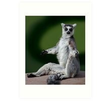 Yoga for Lemurs Art Print
