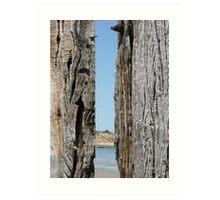 Aldinga Beach between two timeless timbers Art Print