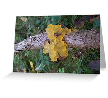 Yellow Jelly  Greeting Card