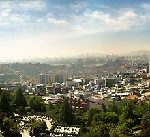 Early Morning Panorama of South Korea's Capital, Seoul by SeeOneSoul