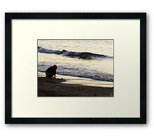 Natural game Framed Print