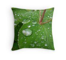 Rain on Hypericum Throw Pillow