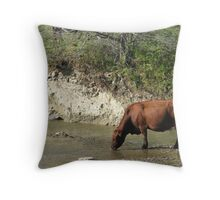 How Now... Throw Pillow