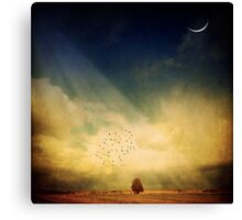 Echo Of A Sigh Canvas Print