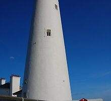 "St Mary""s lighthouse. by Onions"