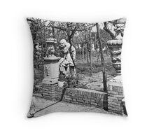 Venetian vineyard Throw Pillow